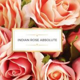 Forest Essentials Ultra Rich Body Lotion Indian Rose Absolute Review